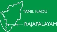 rajapalayam4