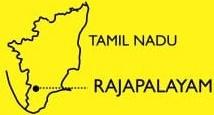 rajapalayam1a
